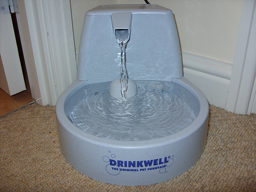 drinkwell_cat_fountain