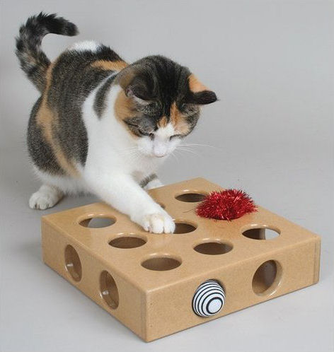 SmartCat Peek And Play Cat Toy Box