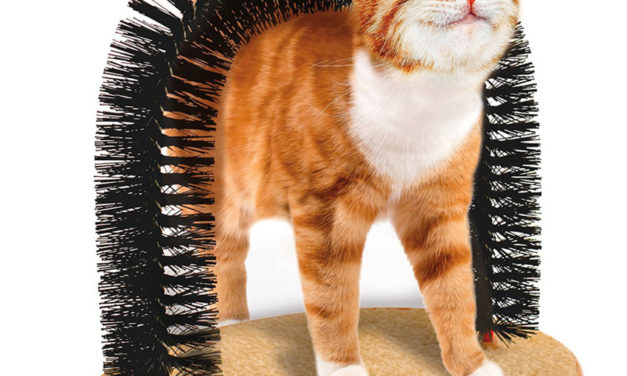 Cat Arched Massaging And Scratching Post